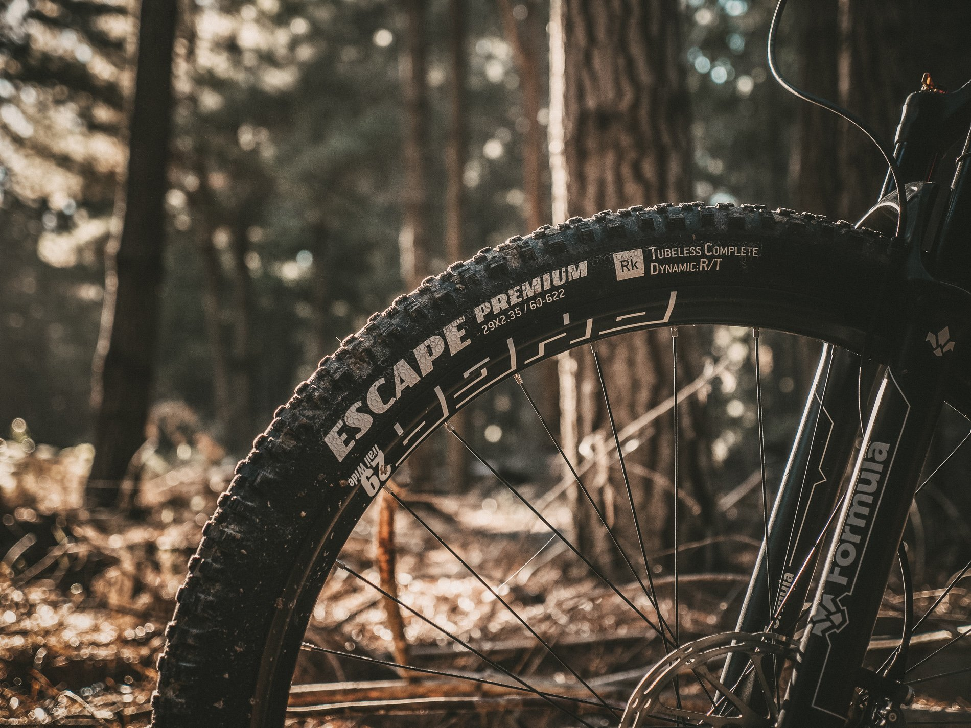Photo of Goodyear Escape mountain bike tire